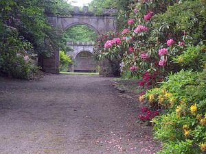 tillmouth-garden-2